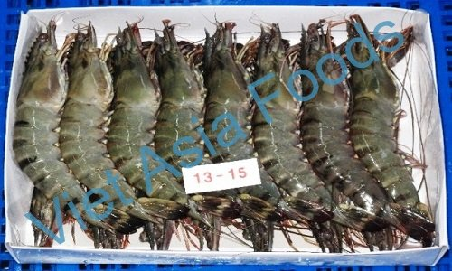 Fresh frozen Shrimp-Prawn-Lobster suppliers