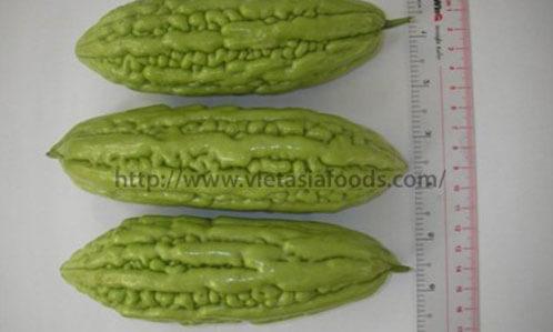 Frozen Bitter Melon distributors