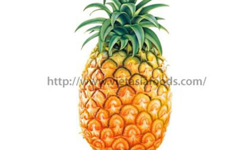 Frozen Pineapple distributors
