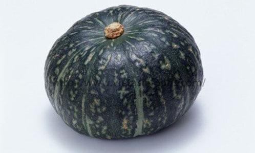 Frozen Pumpkin distributors