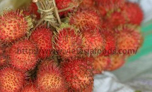 Frozen Rambutan distributors