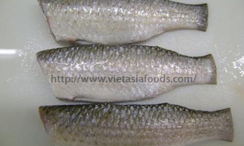 Frozen Grey Mullet Fish – Bata distributors