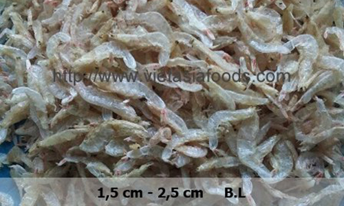 Frozen Cherry Shrimps, Sakura ebi distributors
