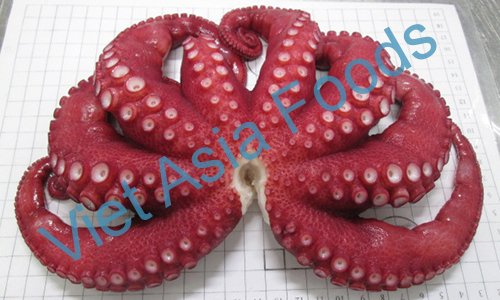 Frozen Octopus distributors