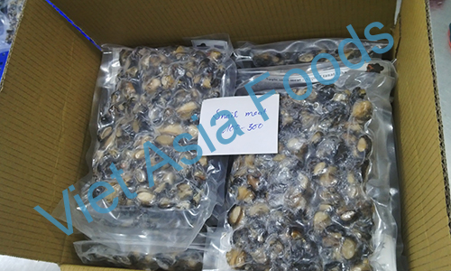 Frozen Apple snails suppliers