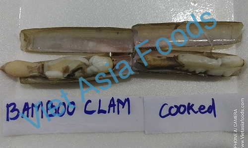 Frozen Bamboo Clam suppliers