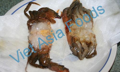 Frozen Soft Shell Crab distributors