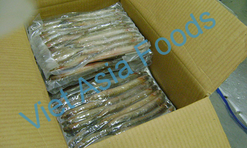 Frozen Keo Fish / Chiring distributors