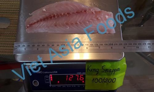 Frozen King Snapper – Himedai distributors
