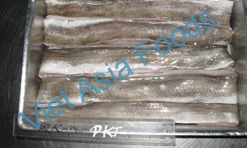 Frozen Pike Conger - Conger Eel - Hamo Anago distributors
