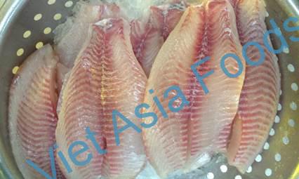 Frozen Red Tilapia distributors
