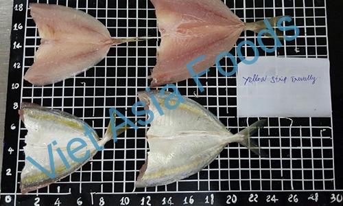 Frozen Yellow stripe trevally - Hosohira-Aji distributors