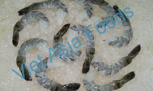 Frozen Black Tiger Shrimp suppliers