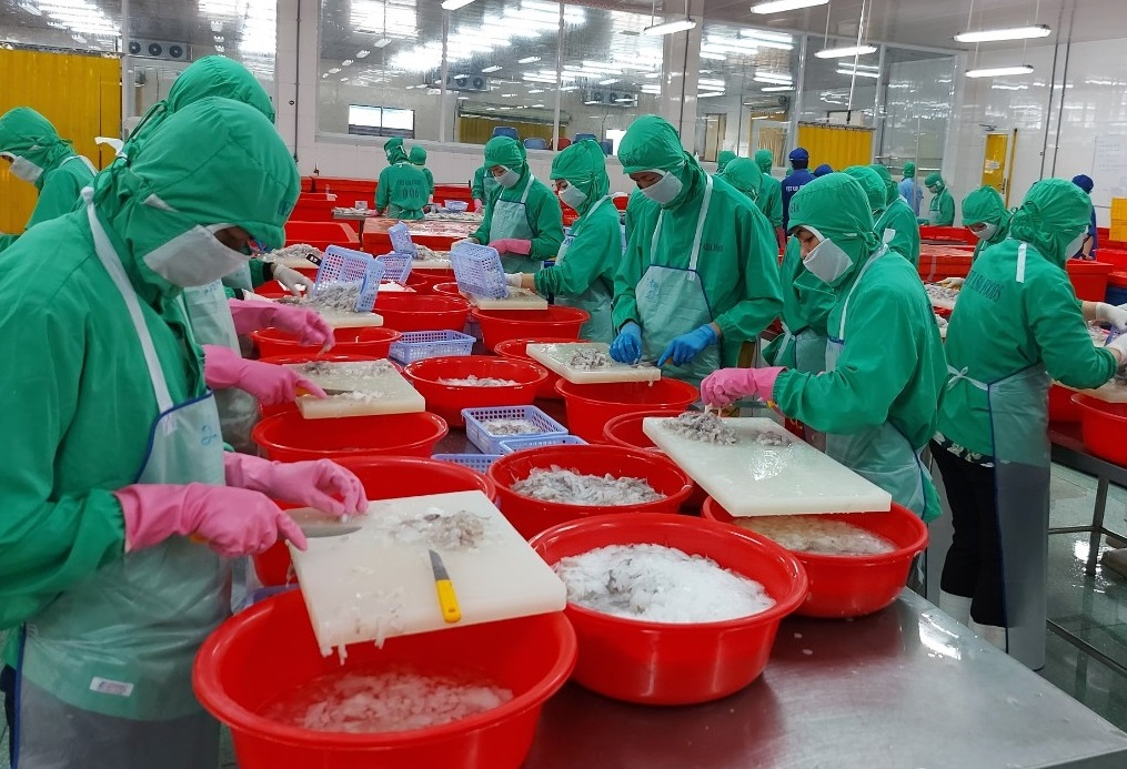 Our frozen product was exported to many countries in world while